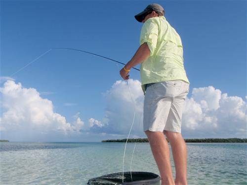 Mr. Hoover fly-fishing in Key West, FL