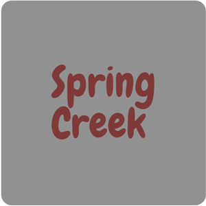 Spring Creek Library